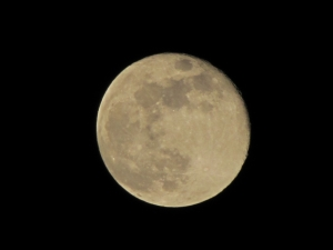 moon-1432956-m