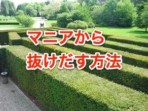yew-hedge-maze-1352479-m
