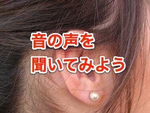ear-1222929-m