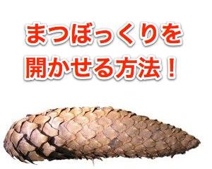 cone-811719-m