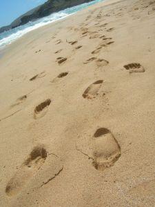 footstep-377491-m
